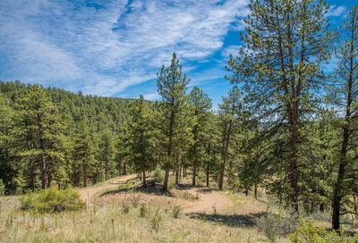 14433 Lot 8 Elk Creek Road Pine CO 80470