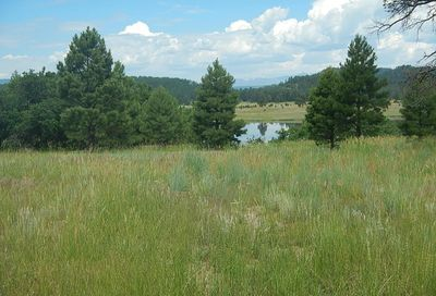 1481 Steven's Lake Rd Road Pagosa Springs CO 81147