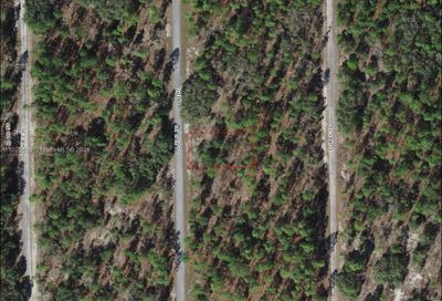 Lot 46 SE 134th Ter Other City - In The State Of Florida FL 34431