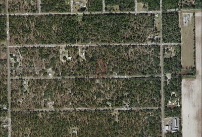 SW Nectarine Ln Other City - In The State Of Florida FL 34431