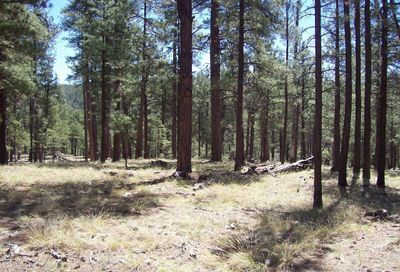 2a Coconino Forest Rd 137a -- Happy Jack AZ 86024