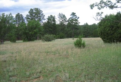 5357 Pinedale Wash Road Pinedale AZ 85934