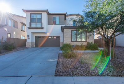 189 E Desert Broom Drive Chandler AZ 85286