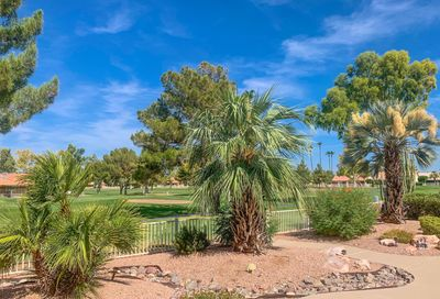26012 S Flame Tree Drive Sun Lakes AZ 85248