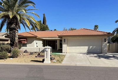 26037 S Hollygreen Drive Sun Lakes AZ 85248