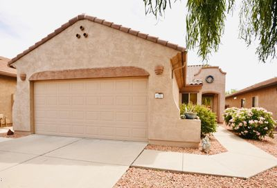 8205 S Pioneer Court Gold Canyon AZ 85118