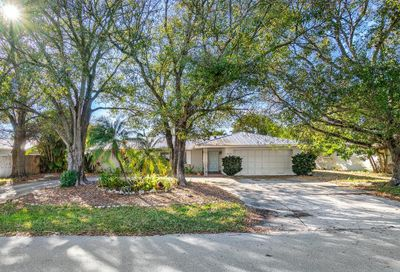 10121 Daphne Avenue Palm Beach Gardens FL 33410