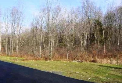Tbd Lot #5 Huckleberry Turnpike Plattekill NY 12568