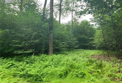 Lot 9 Overview Court Bethel NY 12720
