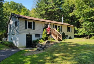 39 Forest Pond Road Narrowsburg NY 12764
