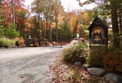 Black Forest Road Road Lumberland NY 12737