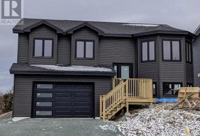8 Winterberry Street Conception Bay South  A1X0K8