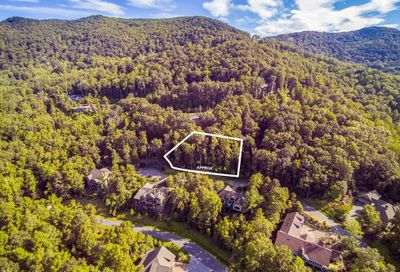 29 Red Tail Court Fairview NC 28730