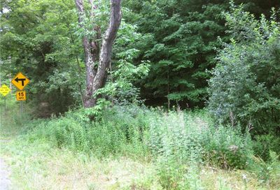 County Route 125 Road Callicoon NY 12724