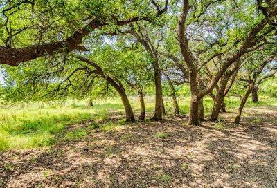 605 Butler Ranch Road Dripping Springs TX 78620