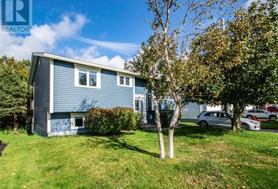 3 Wilcox Place Mount Pearl  A1N3B7