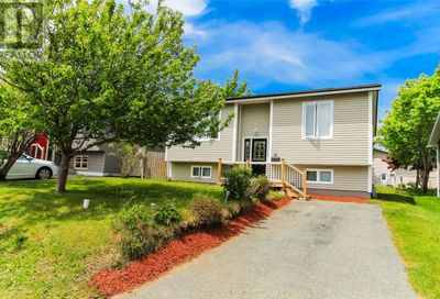 10 Graham Place Mount Pearl  A1N3B6