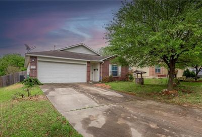 196 Peppergrass Cove Kyle TX 78640