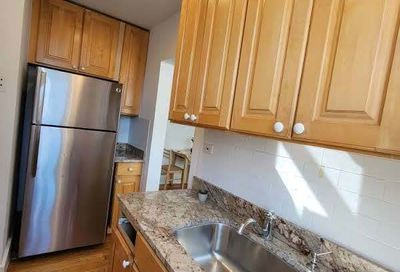 509 W Deming Place Chicago IL 60614