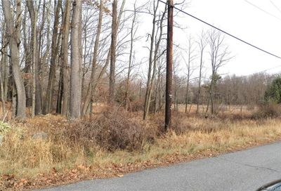 Panther Hill Road Tr 56a Fallsburg NY 12763