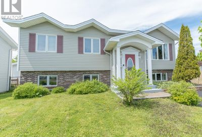 8 Whitehall Place Mount Pearl  A1N4N1