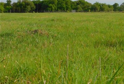 5 Ac Tbd County Road 211 Florence TX 76527