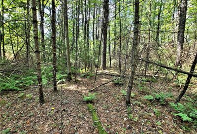 Lot 17 Lemons Brook Road Bethel NY 12786