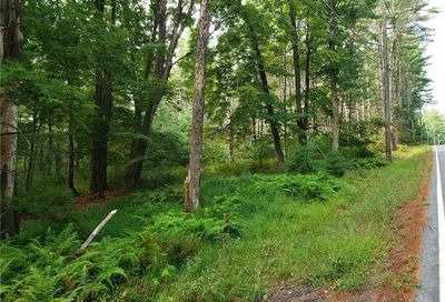 Griffin Road Forestburgh NY 12777