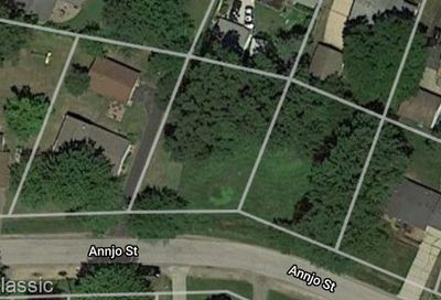 Vacant Annjo Street Walled Lake MI 48390