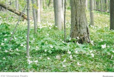 Lot 2 Benstein Commerce Twp MI 48382