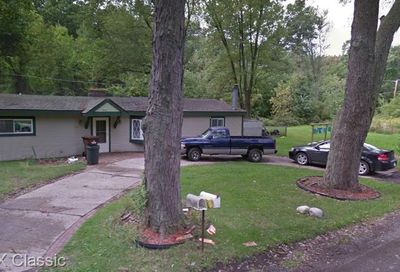 9575 Listeria Street Commerce Twp MI 48382