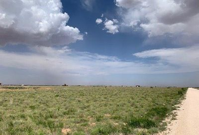 Lot 2 County Road J New Home TX 79373