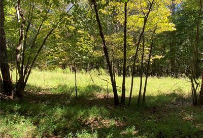 4 Mineral Springs Road Ball Ground GA 30107