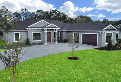 17841 Simmons Road Lutz FL 33548
