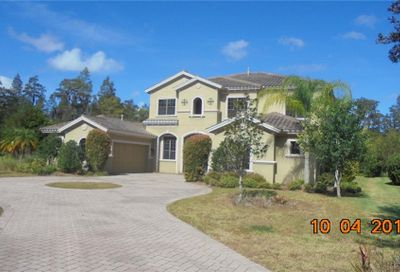 1515 Amarone Place Lutz FL 33548