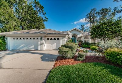 1304 Preservation Way Oldsmar FL 34677