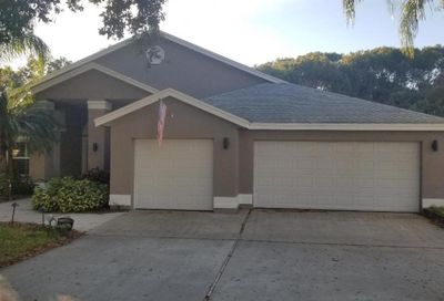 650 Belted Kingfisher Drive N Palm Harbor FL 34683
