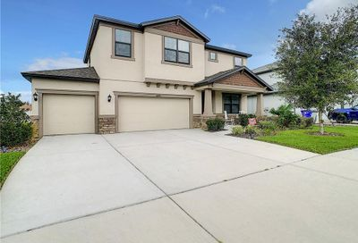 8243 Carlton Ridge Drive Land O Lakes FL 34638