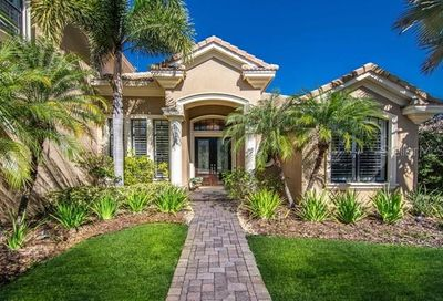 10706 Beagle Run Place Tampa FL 33626