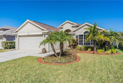 2701 Billingham Drive Land O Lakes FL 34639