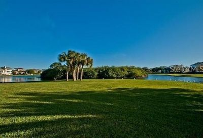 Sandpiper Pointe Court Tarpon Springs FL 34689