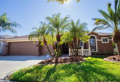 12910 Castlemaine Drive Tampa FL 33626