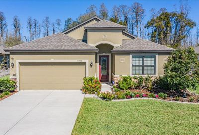 8507 May Port Court Land O Lakes FL 34638