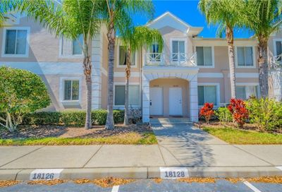 18126 Paradise Point Drive Tampa FL 33647