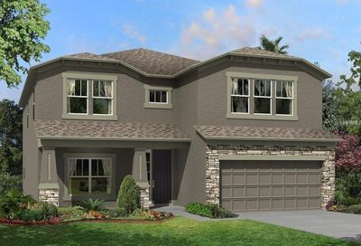 31258 Palm Song Place Wesley Chapel FL 33545