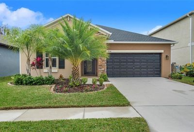 19154 Alexandrea Lee Court Land O Lakes FL 34638