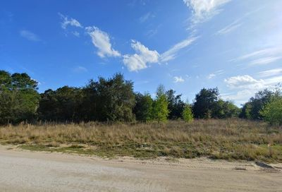 Lost Lake Road Clermont FL 34711