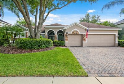 3413 Turningwind Lane Winter Garden FL 34787