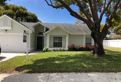 1120 Sunset Ridge Lane Tarpon Springs FL 34689