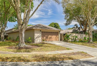 675 Channing Drive Palm Harbor FL 34684